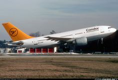 Condor D-AICM Airbus A310-203 aircraft picture
