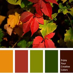 Color Palette #0006 - Million Shade
