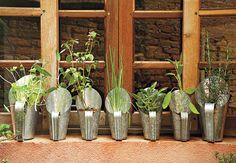 Jardins verticais e suspensos: vida e beleza ao ambiente.