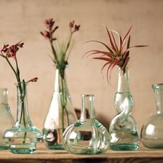 You can never have too many vases or too many blossoms. Pluck a beauty for each of these darling glass vases.  Find the Half a Dozen Vases, as seen in the Bazaar & Beautiful Collection at http://dotandbo.com/collections/bazaar-and-beautiful?utm_source=pinterest&utm_medium=organic&db_sku=98588