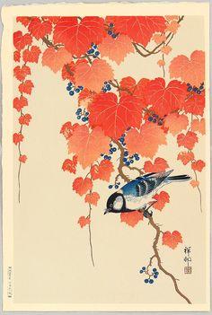 Bird and Red Ivy, Ohara Koson