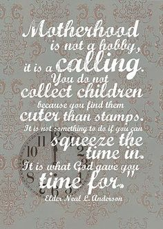 Motherhood is not a hobby it is a calling.