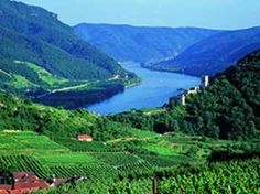 Danube and Wachau Valley Tour - Excursions in Vienna Wachau Valley, White Wines, Danube River, Vienna Austria, Summer Months, Wineries, Tour Guide, Day Trip, Banks