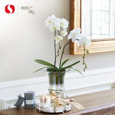 Debi S Favorite Gifts This Holiday Season Are Fresh Chic
