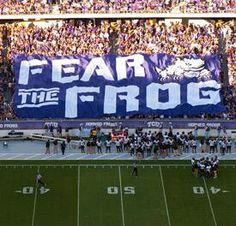 Fear the FROG!
