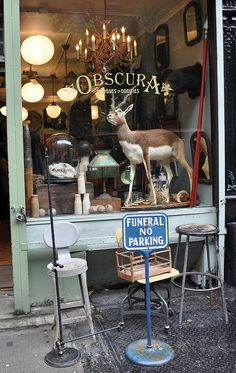 Obscura, New York shop For some people, Vintage means obscure / unique / hard to find objects Repinned by www.silver-and-grey.com