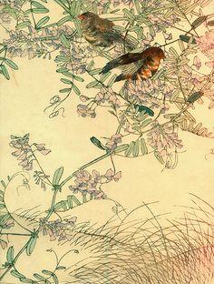 Japanese birds | Flickr - Photo Sharing!