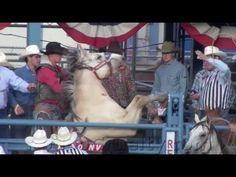 2013 Reno Rodeo to Ban Cameras