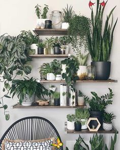 18+ Astonishing Natural Home Decor Modern  Ideas 10 Smashing Cool Tips: Natural Home Decor Modern Master Bedrooms natural home decor ideas house smells.Natural Home Decor Rustic Light Fixtures all natural home decor woods.Natural Home Decor Earth Tones Brown..<br> Prodigious Natural Home Decor Modern Ideas.18+ Astonishing Natural Home Decor Modern Ideas