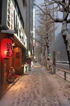 Snowy Shinjuku #3 by taiyakitsune