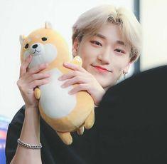 Donde Yeosang tiene un pequeño crush con su mejor amigo , el cual es … #fanfic # Fanfic # amreading # books # wattpad Sans Cute, Seventeen Wonwoo, Cute Fox, Pretty Men, Cute Icons, Plushies, Softies, Kpop Boy, Hello Everyone