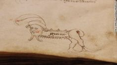 Medieval doodles and hidden manuscripts.  These cheeky 700-year-old doodles feel like they were drawn yesterday.