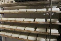 Maduracion de quesos de cabra la Cabezuela