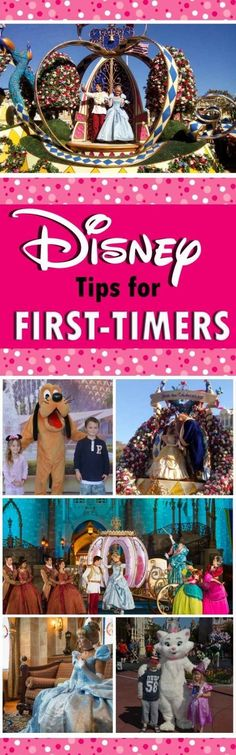 Disney Tips for Firs