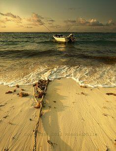 Fishing boat. Mexico  curta: www.facebook.com/AmoQuandoVejo