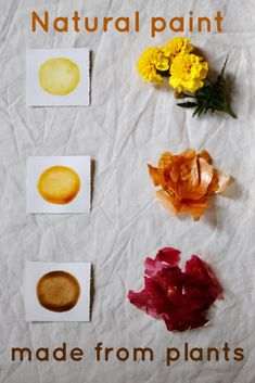 Making natural paints and inks from plants Gumnut Magic How To Make Ink, Natural Dye Fabric, Natural Dyeing, Skin Paint, Homemade Paint, Earth Pigments, Diy Inspiration, Gum Arabic, How To Dye Fabric