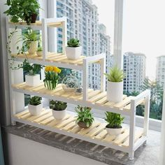Plant Shelves Outdoor, Garden Shelves, Wooden Plant Stands, Diy Plant Stand, House Plants Decor, Plant Decor, Hanging Plants, Indoor Plants, Cheap Plants