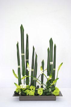 Ikebana moderne par Thai Thomas Mai Van (Artcraft) par Thai Mai Van Cette composition florale moderne a été réalisé par Thai Thomas Mai Van, Artisan d'Art, Designer floral, Professeur d'ikebana Ikenobo basée sur la verticalité et le parallélisme, inspirée par l'artiste Korin Ogata (1658-1716) de l'école japonaise de peinture décorative Rimpa. Elle s'appuie sur une technique de roulage des feuilles d'Aspidistras…