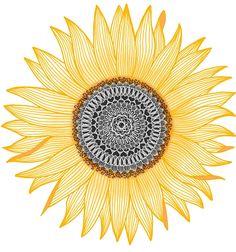'Golden Mandala Sunflower' Art Print by paviash Mandala Tattoo Design, Mandala Art, Dotwork Tattoo Mandala, Mandalas Painting, Mandala Drawing, Tattoo Designs, Sunflower Art, Sunflower Tattoos, Sunflower Mandala Tattoo