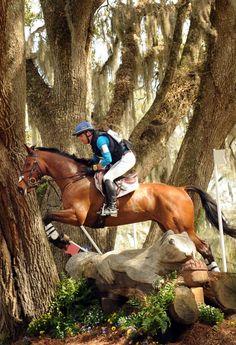 awesome tree jump
