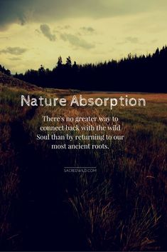 Yes I Go To Nature To Be Soothed And Healed And To Have My Sense