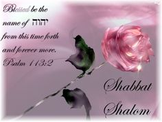 Cathy (@Apostlecathy) | Twitter  #OFFLINE this weekend. Need 2sit at HIS feet #Shabbat #Shalom blessed sunday gathering 1 in #Yeshua! Let HIM lead you to the complete truth