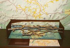a tactile exhibit showing the various passages in Mammoth Cave, while in the background is a map showing the size and shape of the cave on a...