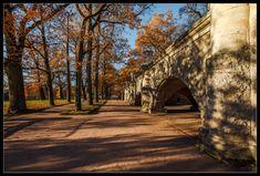 35PHOTO - Илья Штром - про теплую осень в Царском Селе