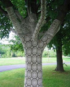 laced tree...great photo prop!!!! I can see a candle chandelier hanging from tree!!!! I can also see many miss matched chandeliers up in the tree.Diane