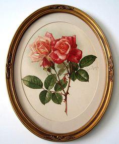 c1901 Roses Print Paul de Longpre Buy now at Victorian Rose Prints on rubylane.com