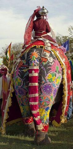 Dussera Celebration, India