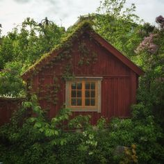 Hus kan vara verkligen magiskt fina. Jag hittade detta lilla väldigt enkla lilla huset idag och man - byggnadsverk.se Cute Cottage, Red Cottage, Small Cottages, Cabins And Cottages, Modern Farmhouse, Farmhouse Style, Red Houses, Nordic Lights, Le Shop