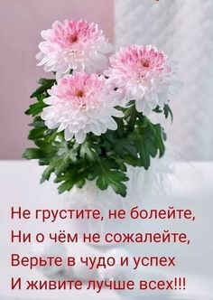 Russian Quotes, Good Morning, Poems, Cards, Pictures, Inspiration, Doa, Live, Pear Trees