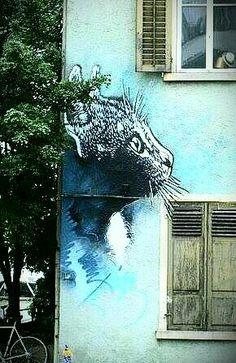This would be a eyecatcher - Cat art Street Art Utopia, Murals Street Art, Street Art Graffiti, Banksy, Pavement Art, Different Kinds Of Art, Street Art Photography, Chalk Art, Land Art