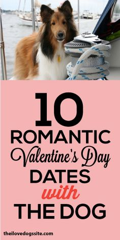 10 Romantic Valentine's Day Dates With The Dog! <3