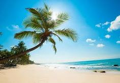 Image result for paisajes hermosos en la playa