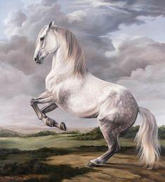 Levade, Painting by Jaime Corum Most Beautiful Horses, Pretty Horses, Horse Drawings, Animal Drawings, Arte Equina, Horse Sketch, Horse Artwork, White Horses, Equine Art