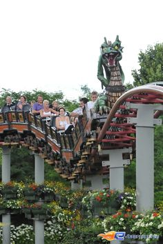 7/14   Photo du Roller Coaster De Draak situé à Plopsaland de Panne (Belgique). Plus d'information sur notre site http://www.e-coasters.com !! Tous les meilleurs Parcs d'Attractions sur un seul site web !! Découvrez également notre vidéo embarquée à cette adresse : http://youtu.be/hSAAlNKZEmU