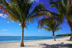 Our favorite way to catch some shade. #cococay