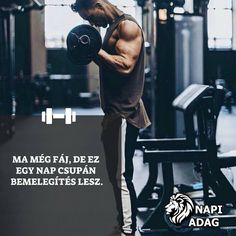 Hungary, Healthy Lifestyle, Wrestling, Gym, Motivation, Fitness, Lucha Libre, Healthy Living, Excercise