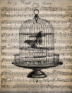 Seriously gorgeous birdcage adorned sheet music printable image. #birdcage #vintage #music #sheet #butterfly #printables #free #downloadable #scrapbooking #crafts #card #card_making #paper_crafting #crafts