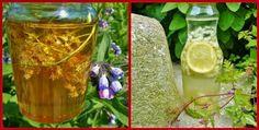 DE GULLE AARDE: vlierbloesemhoning en -water Glass Vase, Herbs, Plants, Beverages, Drinks, Home Decor, Food, Seeds, Drinking