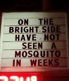 On the bright side have not seen a mosquito in weeks. Maine Winter, On The Bright Side, Facebook Humor, Funny Picture Quotes, Fun Quotes, You Funny, Funny Stuff, Random Stuff