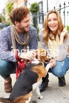 Couple Taking Dog For Walk On City Street