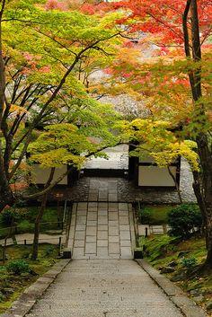 Path to Jojakko-ji Temple | Kyoto #japan #Kyoto #travel