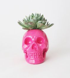 Plant Holder, Skull, Pink Skull, Skull Sculpture, Skull Decor, Skulls, Skull Housewares, Gift for Her, Human Skull, Sculpture Skull
