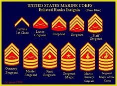 Marine Corps ranks............ Marine Corps Ranks, Marine Corps Emblem, Marine Corps Humor, Army Ranks, Military Ranks, Military Service, Master Sergeant, Staff Sergeant, Military Terms