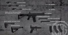 SIG556xi AR and AK Ammunition in a Single Gun