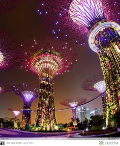 """Singapore's Supertrees at the """"Gardens by the Bay"""". I see I'll have to go back to Singapore to see these by night."""