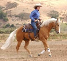 What Good Horse Trainers *Don't* Do | @EquiSearch.com | Photo by Caroline Fyffe